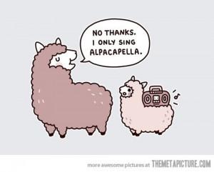 funny-alpaca-music-acapella
