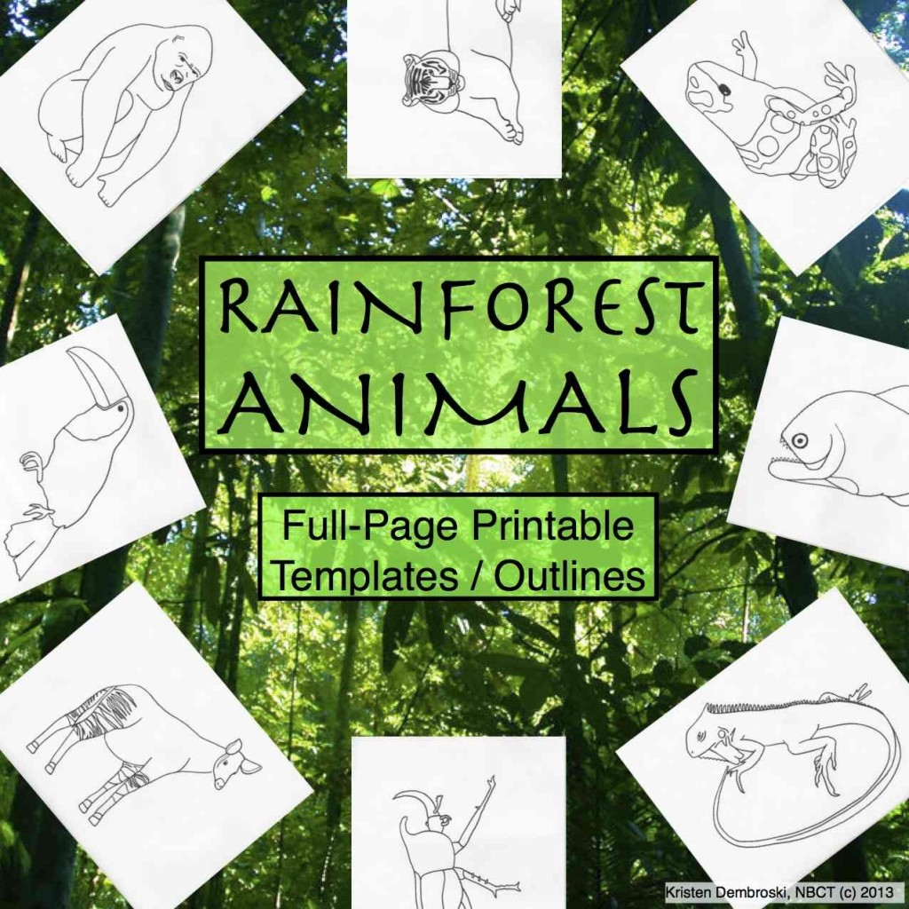 Rainforest Coloring Book (c) Kristen Dembroski