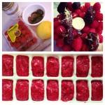 Raspberry Torte (c) Kristen Dembroski