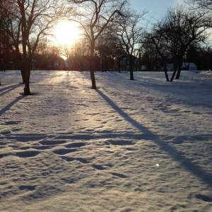 Sun and Snow (c) Kristen Dembroski
